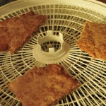 Dehydrated Turkey Treat Recipe - Place In Dehydrator